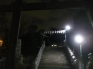 白金氷川神社1