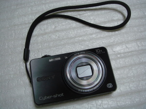 DSC-WX100 1