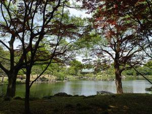 清澄庭園11