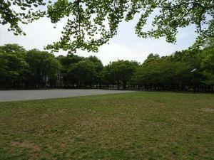 清澄庭園15