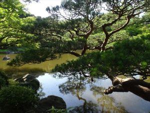 旧古河庭園12