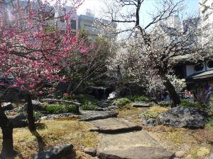 湯島神社4