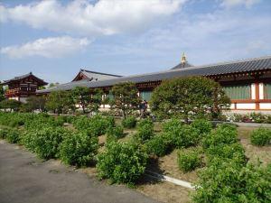 薬師寺11