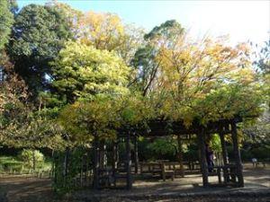 有栖川公園4