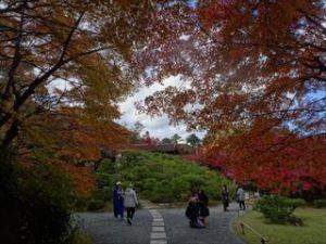 大河内山荘庭園2