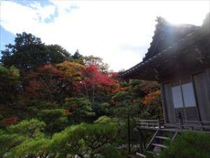 大河内山荘庭園6