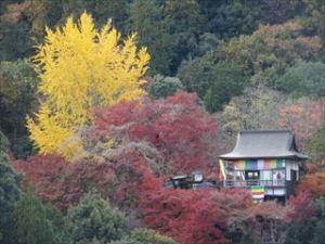 大河内山荘庭園9