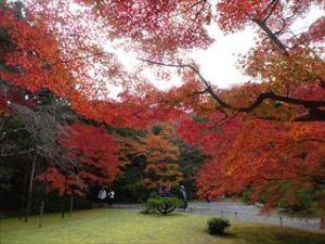 大河内山荘庭園12
