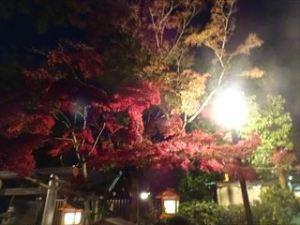 茶菓円山6