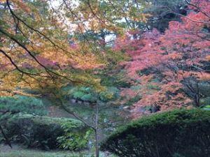 東京都庭園美術館3