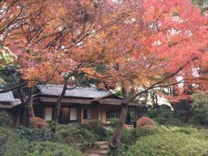 東京都庭園美術館4