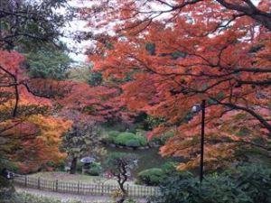 東京都庭園美術館7