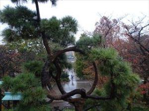 上野恩賜公園3