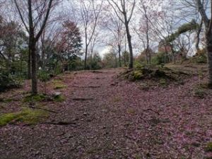 熊野若王子神社3