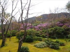 大河内山荘庭園5