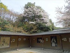 大河内山荘庭園8