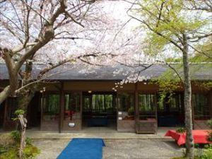 大河内山荘庭園10