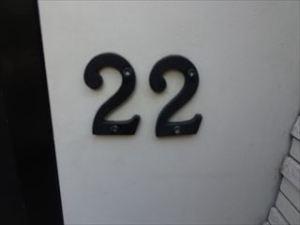 鳥さわ222