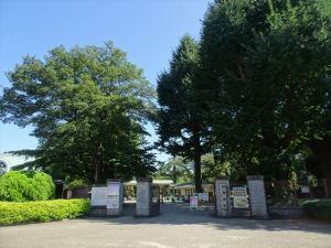 新宿御苑11