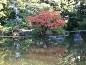 旧古河庭園10