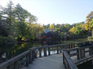 井の頭恩賜公園3
