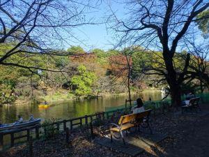 井の頭恩賜公園5