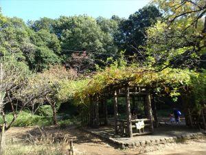 有栖川記念公園5