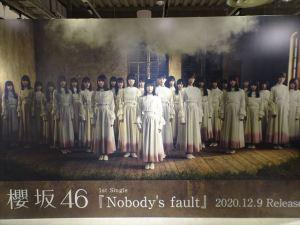 櫻坂463