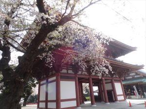 池上本門寺7
