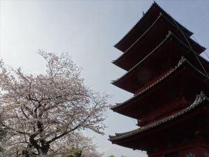 池上本門寺9